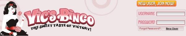 Vics Bingo Header Image